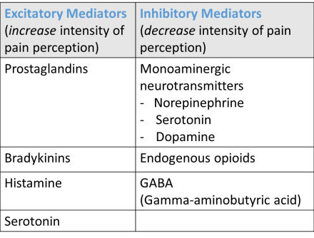 Excitatory and inhibitory mediators of pain perception