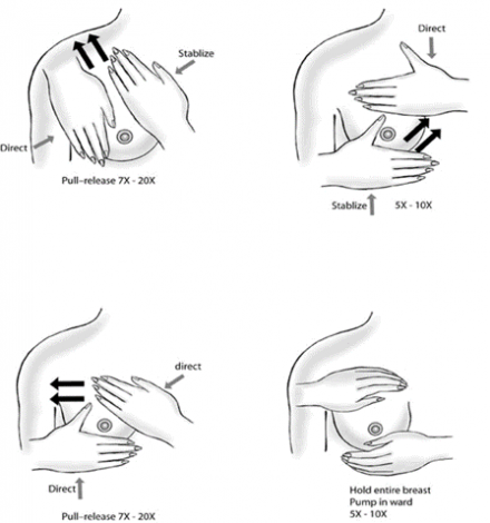 Illustration showing various motions to massage the breast to help with letdown of milk and easier latch.